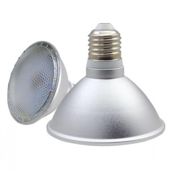 Ampoule Spot LED E27 PAR38 15 Watts IP65
